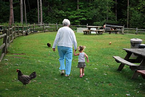 on the friendly farm